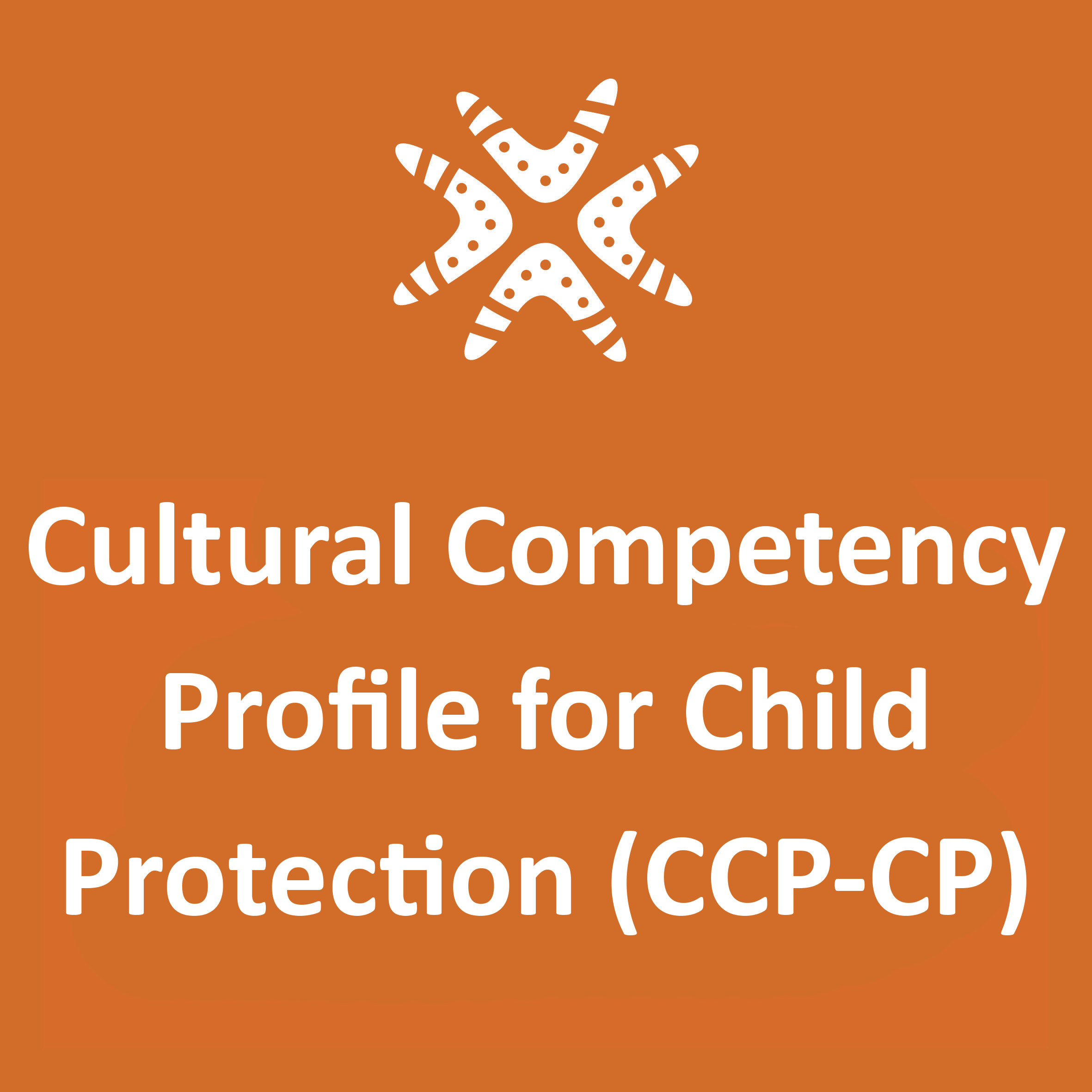 The Cultural Competency Profile for Child Protection (CCP-CP)